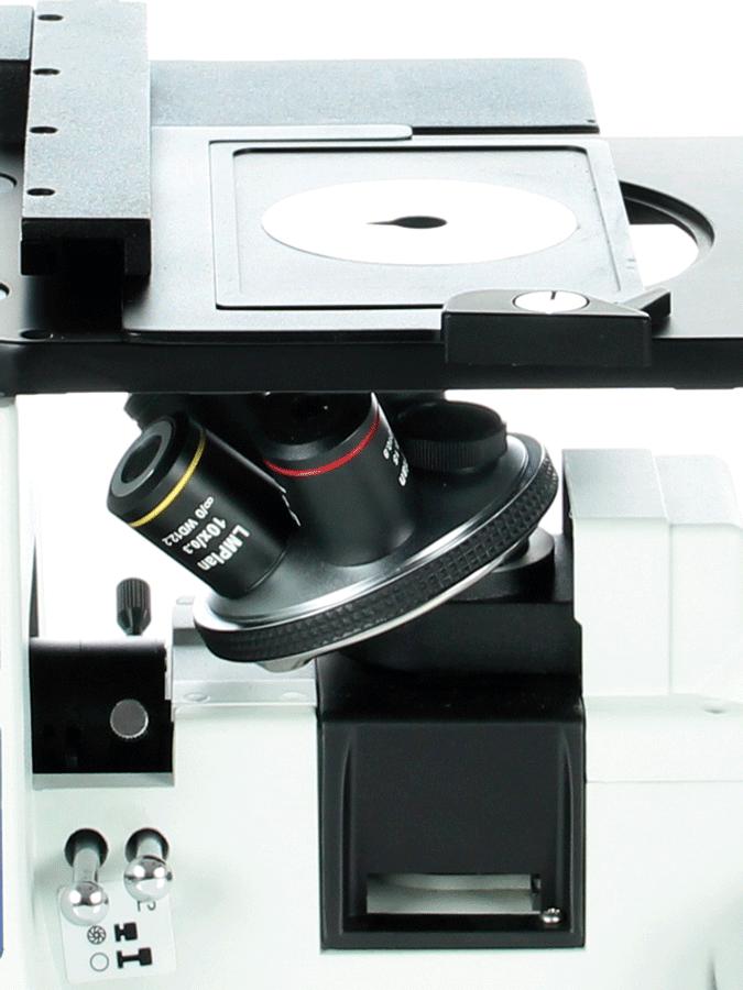 OX.2153-PLM_3
