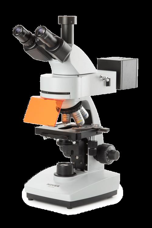 Microscopes pour fluorescence sciences de la vie euromex for Miroir dichroique